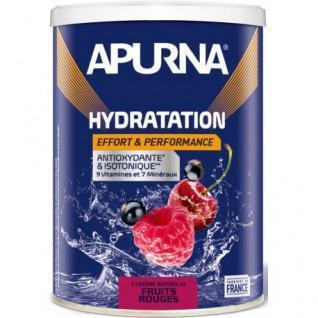 Apurna energy drink Red fruits - 500g